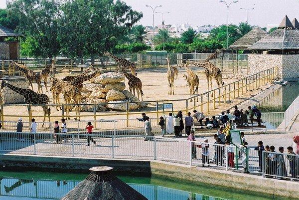 Photo of اماكن سياحية في قطر