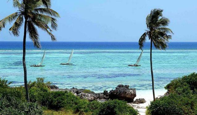 Photo of افضل الاماكن السياحية في تنزانيا