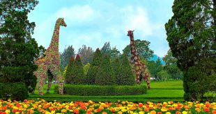 الاماكن السياحية في بونشاك
