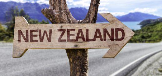 Photo of كيفية الحصول على عقد عمل في نيوزيلندا بطرق قانونية