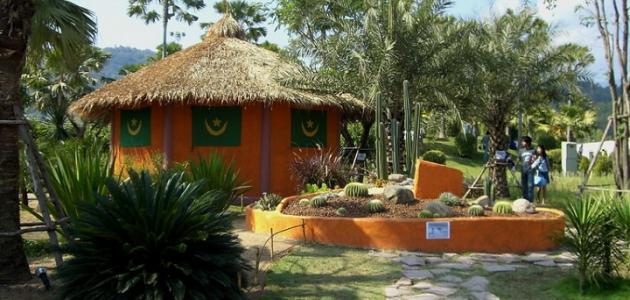 Photo of السياحة في موريتانيا بالصور وأهم الفنادق في العاصمة