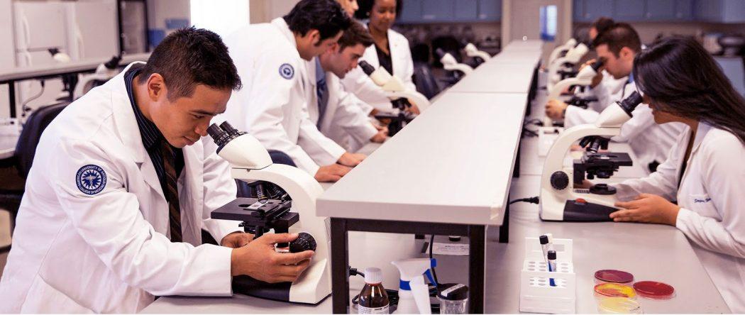 Photo of دراسة الطب في أمريكا وكل المعلومات الهامة عن الدراسة في كلية الطب بجامعات أمريكا