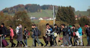 اللجوء إلى النمسا