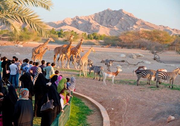 Photo of رحلة إلى حديقة حيوانات العين وأسعار الدخول