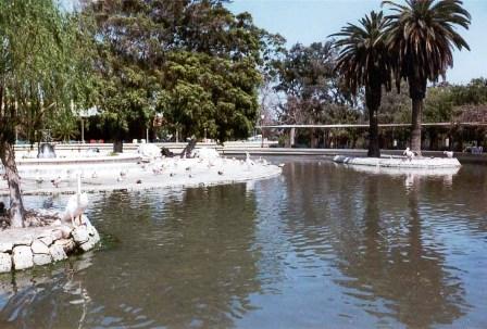 Photo of أهم الأنشطة السياحية وملامح حديقة أنطونيادس