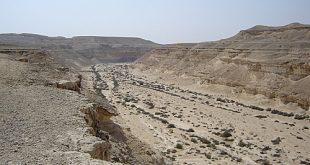 محمية وادي دجلة