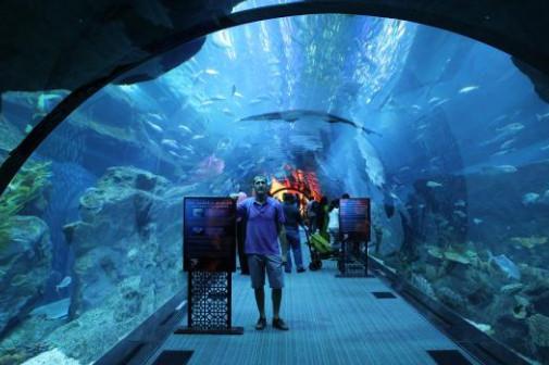 افضل الاماكن السياحية في دبي