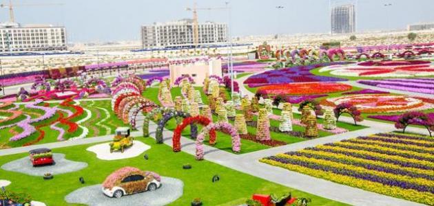 Photo of حديقة الزهور دبي وكيفية الوصول إليها