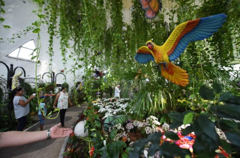 Photo of حديقة الفراشات الأنشطة الترفيهية ومواعيد الدخول