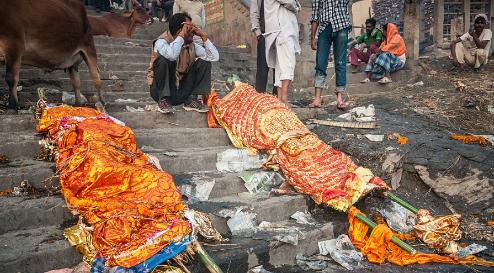 عجائب وغرائب بلاد الهند