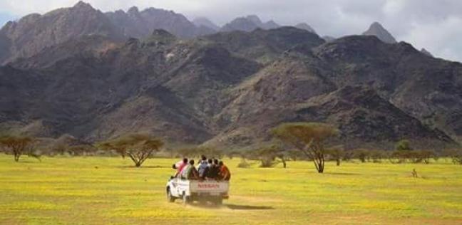 Photo of أهم ملامح محمية جبل علبة وأهم المميزات