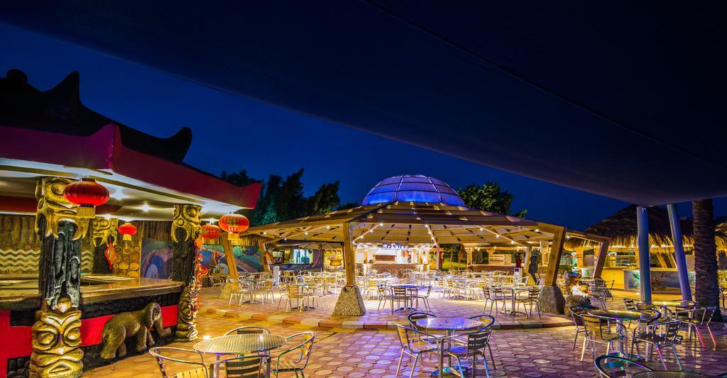 Photo of تقرير عن منتجع سيجال الغردقة | تعرف على أسعار الغرف وطرق التواصل فندق Sea Gull Beach Resort