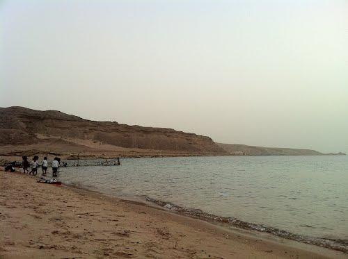 Photo of أنشطة ترفيهية في شاطئ حقل
