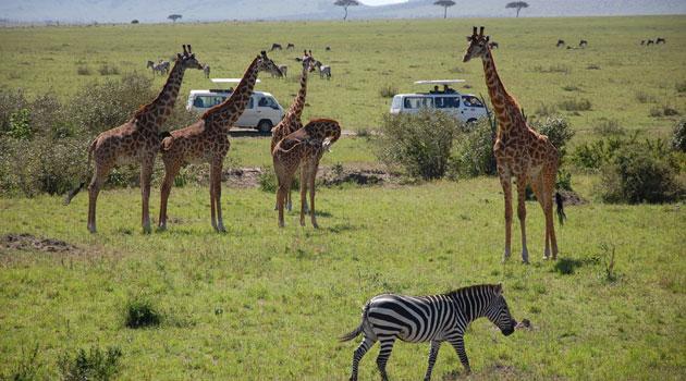 Photo of أهم الاماكن السياحية في كينيا