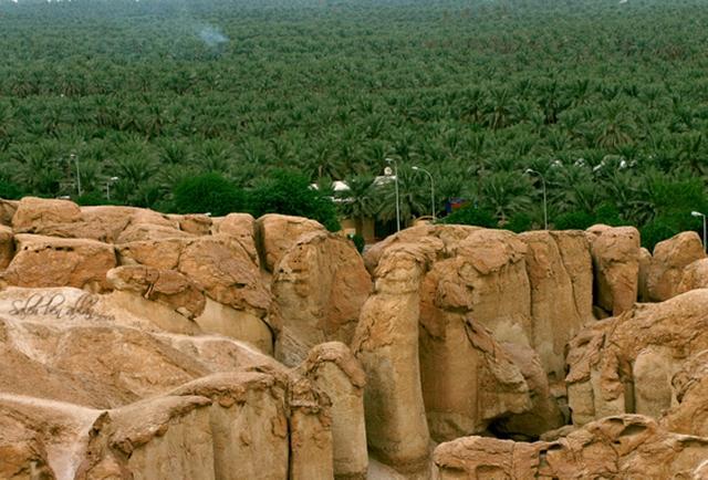 Photo of أنشطة ترفيهية في جبل القارة الأحساء وأهم الفنادق القريبة