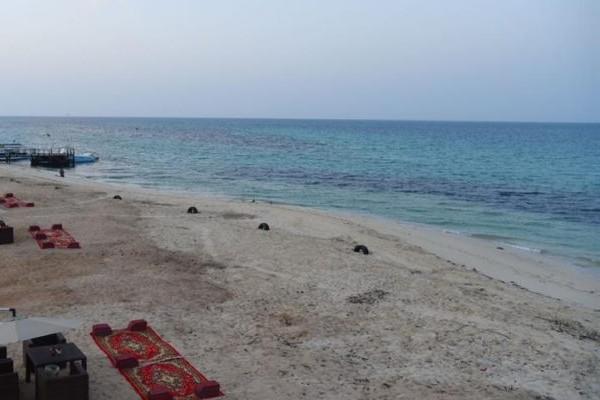 Photo of أنشطة سياحية في جزيرة احبار جازان وأفضل الفنادق القريبة له