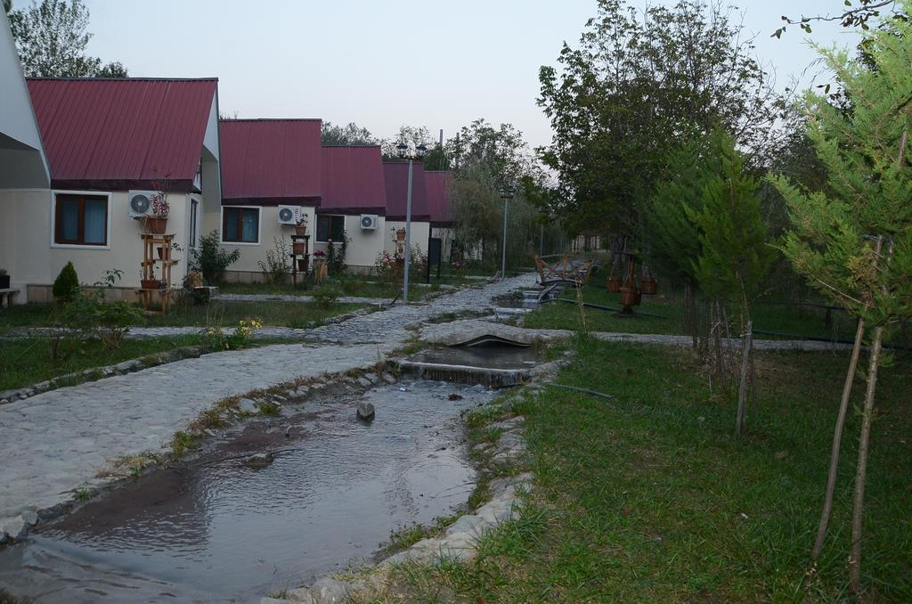 Photo of الأماكن السياحية في غابالا وأهم الأنشطة والمطاعم