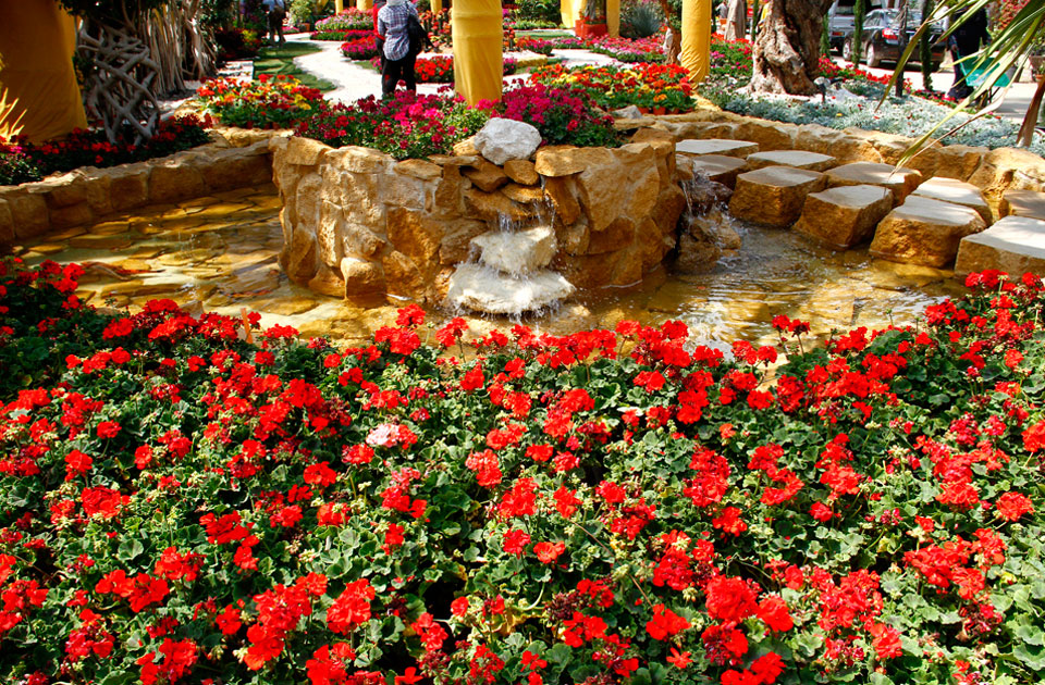 Photo of حديقة الاورمان النباتية وسعر تذكرة حديقة الاورمان 2020 ومواعيد الزيارة